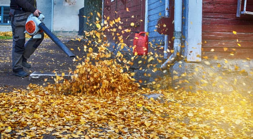 Blowing leaves from the yard with a blower vacuum