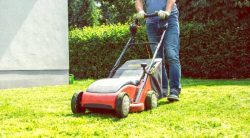 The 5 Best Dethatcher Blades For Your Lawn Mower